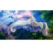 Unicorn Fantasy  136445 High Quality And Resolution Wallpapers