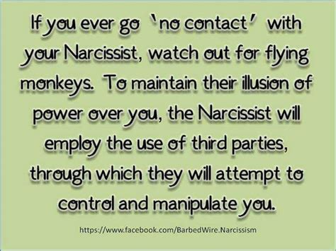 up letter to narcissist to my narcissist in s flying monkey open letter