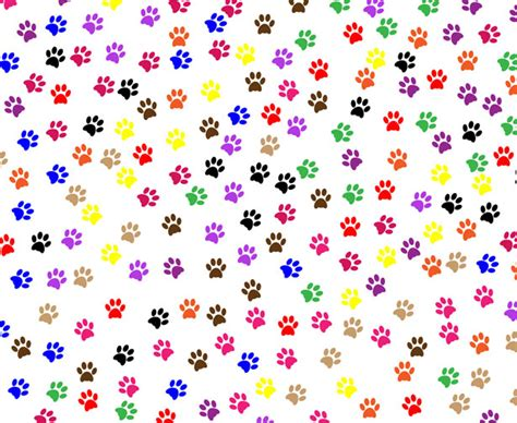 dog print wallpaper colorful dog paws