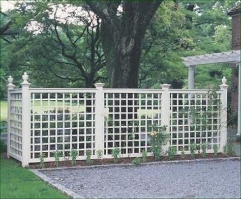 backyard screening options 22 best images about walpole outdoors lattice on pinterest