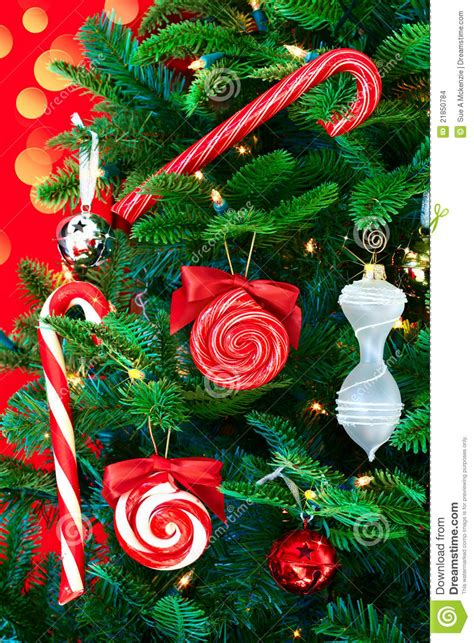 noble pine christmas tree  candy canes stock images