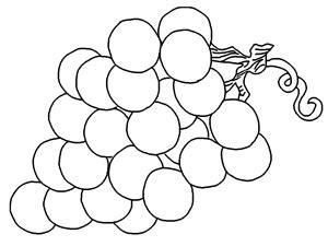 preschool coloring pages grapes preschool coloring picture of grapes coloring pages