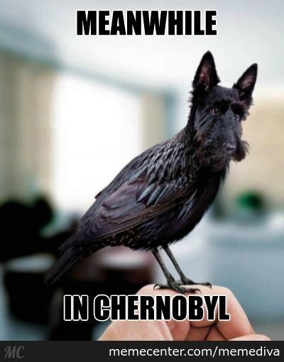 In Meme - meanwhile in chernobyl by memediva meme center