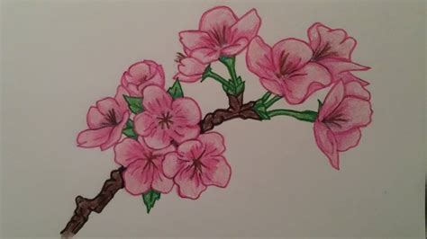 japanese cherry blossom tattoo design by