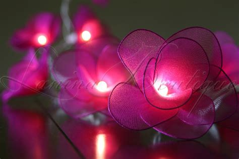 35 dark pink nylon rose flower 6m long string led fairy