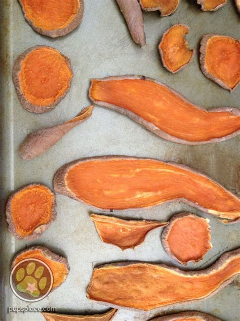 dogs and sweet potatoes easy baked sweet potato treats pup s place