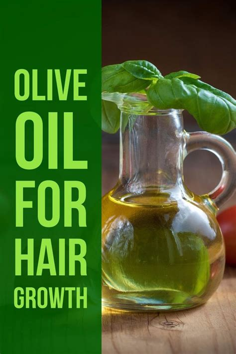 olive oil for hair wiki olive oil hair growth 25 best ideas about olive oil for