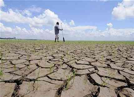 drought stricken southern africa faces food shortage