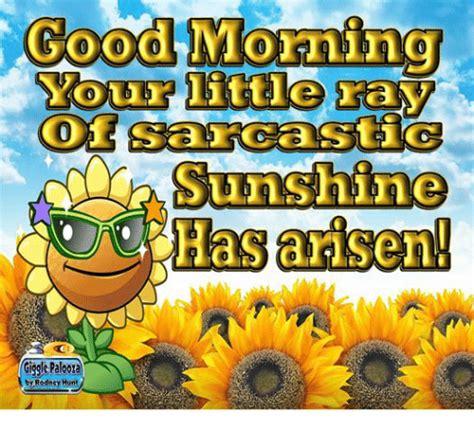 Good Morning Sunshine Meme - search good morning sunshine memes on me me