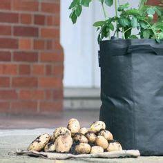 plantadores de patatas m 225 s de 25 ideas incre 237 bles sobre potato planter en