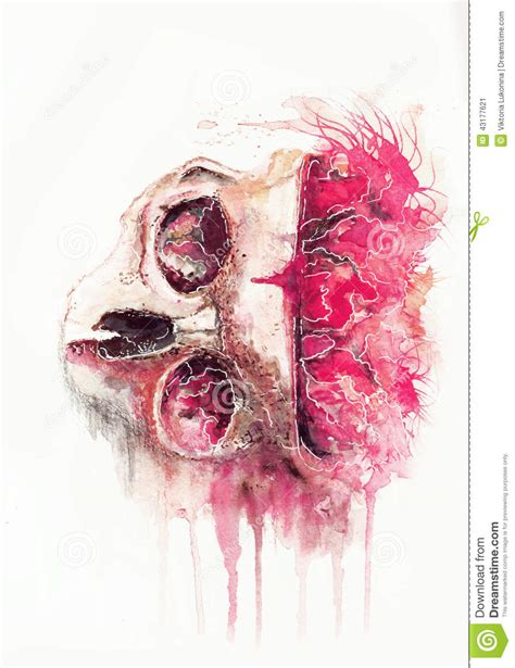 the watercolor space skull stock illustration image of