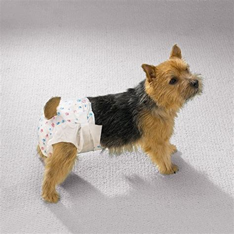 diapers for dogs in heat clean go pet disposable doggie diapers convenient diapers for incontinent dogs