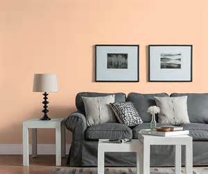 Blue Gray House Color modern peach color of the month july 2015 bellini