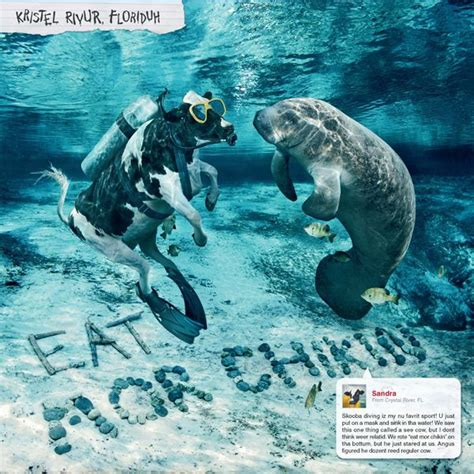 Fil A Calendar 17 Best Images About Fil A On A Cow