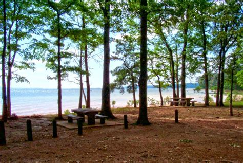 Sabine National Forest Cabins by Lakeview Cground In Sabine National Forest Toledo
