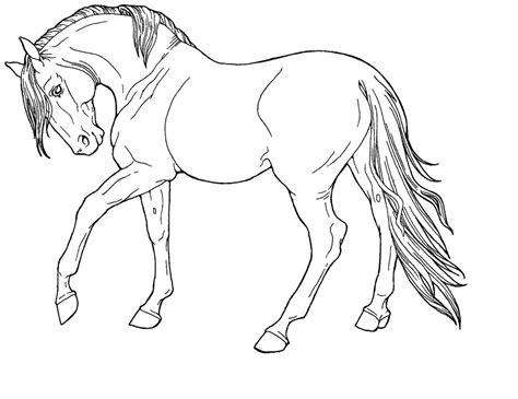 free line art fine horse by applehunter on deviantart