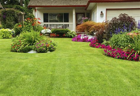 beautiful backyards on a budget bloombety beautiful backyards on a budget with green