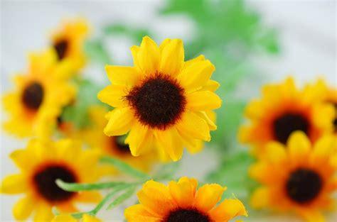 Sprei Sun Flower mini sunflower spray 29 5in