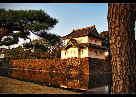 imagenes de japon hermosas hermosas fotos de jap 243 n taringa