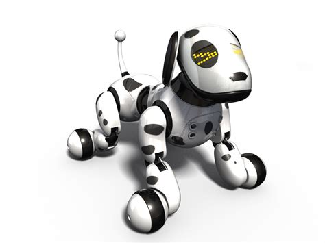 zoomer puppies zoomer review 2013