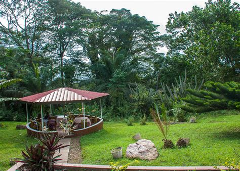aburi botanical garden 11 creative places in to get married