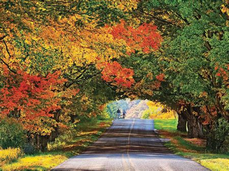 in color michigan michigan s peak color depends on next 30 days news for