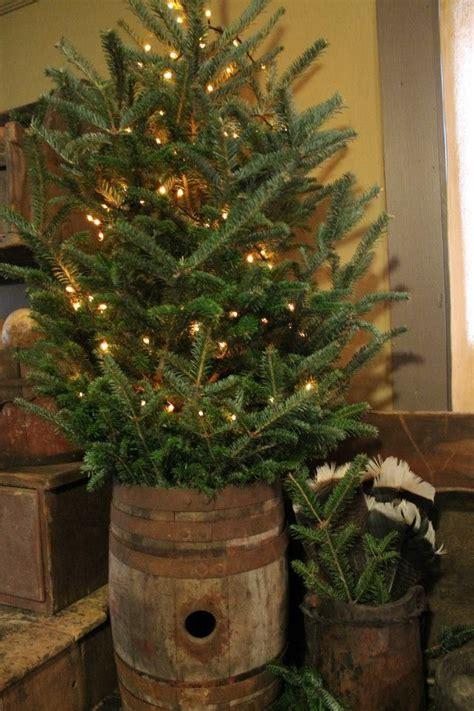 trees posts  whiskey barrels  pinterest