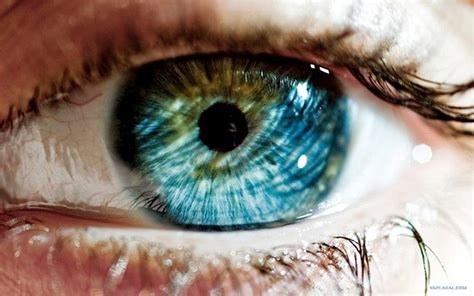 eye color science your eye color reveals a lot about you the mind