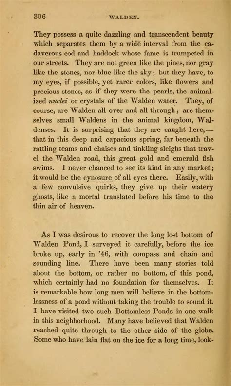 walden book citation page walden or in the woods djvu 310 wikisource