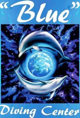 blue dive centre blue diving center nea potidea greece updated 2018 all