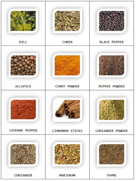 spice jar label templates spice jar labels and templates to print free spice jar