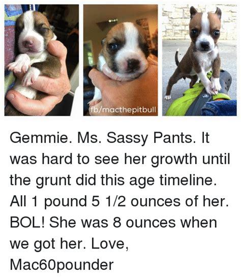 Sassy Pants Meme - 25 best memes about sassy pants sassy pants memes
