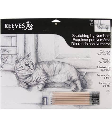 sketchbook reeves reeves cat sketching by number jo