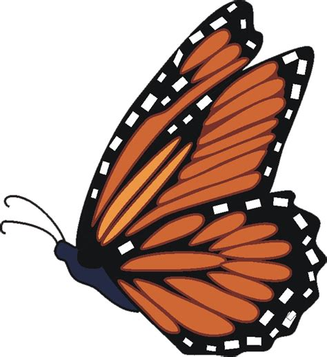 free butterfly clipart free butterfly images free free clip free