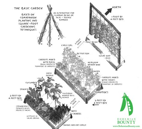 Planting Vegetable Garden Layout Garden Designs Gallery Bohemian Bounty