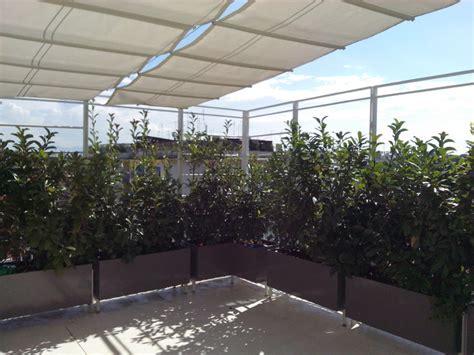 vasi da terrazza arredi e sistemazioni a verde terrazzo con vasi in ferro a