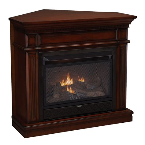 shop cedar ridge hearth 42 in dual burner vent free auburn