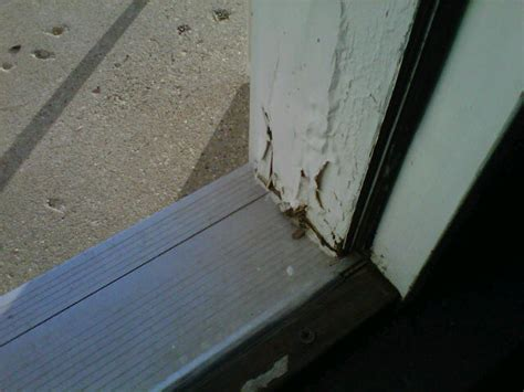 Replace Door Jamb Exterior Repair Or Replace A Rotten Door Jamb Or Sill 171 Ezhangdoor S