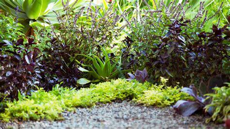 edible garden ideas front yard edible garden ideas home design ideas