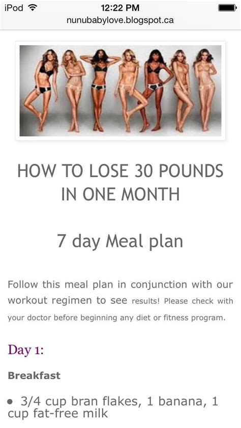 One Month Detox Weight Lose by Best 10 Lose 30 Pounds Ideas On 30 Day Diet