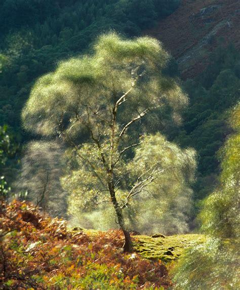 Landscape Movements Landscape Photography Motion And Movement