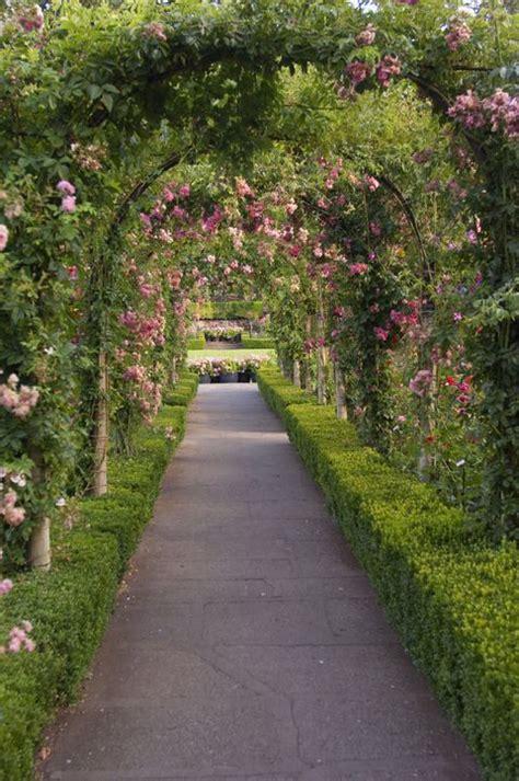 garden design ideas  plans  garden layouts