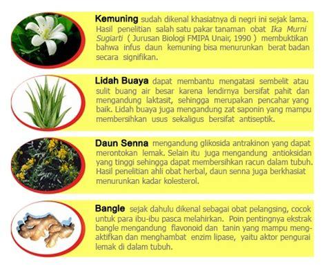 Murah Ratu Langsing ratu lansing obat pelangsing herbal murah berkualitas