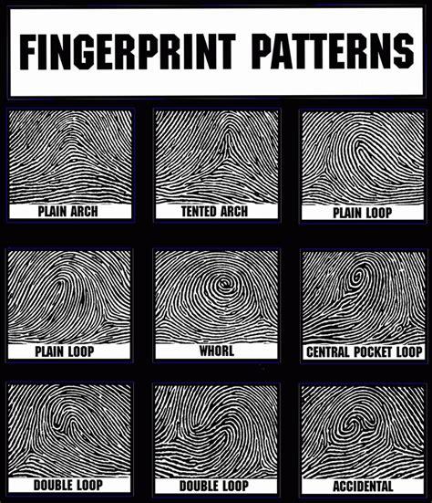 print pattern types picture of fingerprint patterns parties plus spy