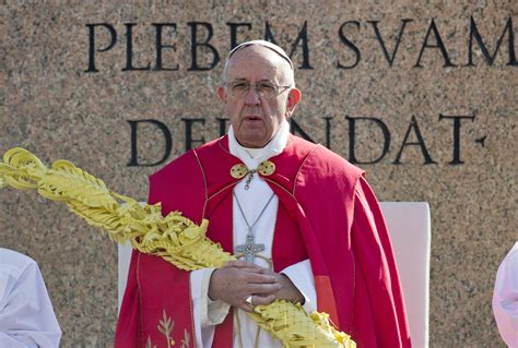 the pope of palm a novel serge storms books pope in palm sunday homily decries indifference to