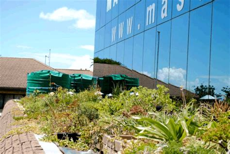 Mba Kzn by South Africa Archives Greenroofs Sky Gardens