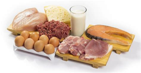 7 protein foods 7 day protein diet livestrong