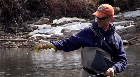 fly fishing tips archives colorado fly fishing archives colorado fly fishing