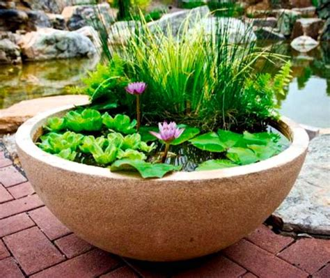 small water gardens in containers pond in a pot create a container water garden container