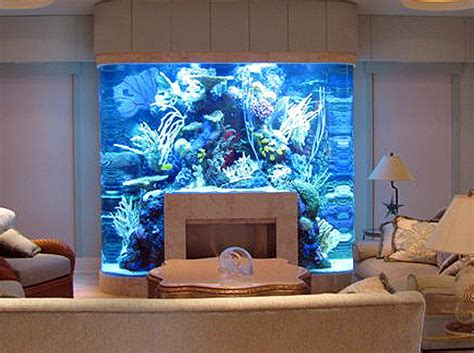 fishtank bedroom fish tank bedroom bedroom ideas pictures